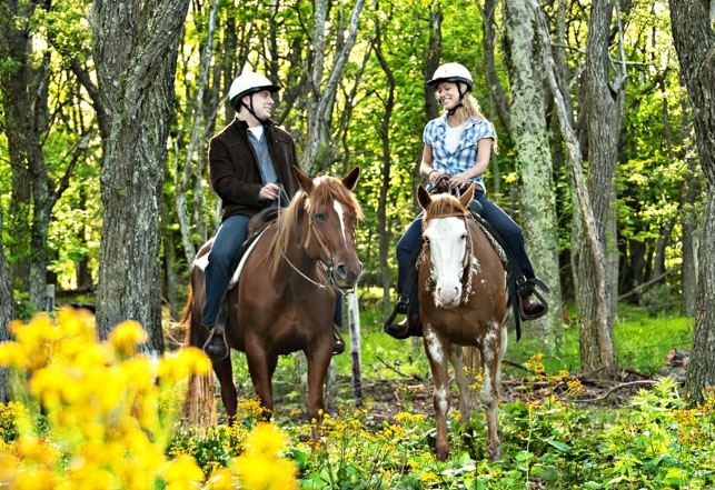 Nearby: Horseback riding at Skyland in Shenandoah National Park.